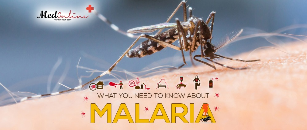 What-you-Need-To-Know-About-Malaria